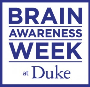 duke_brain